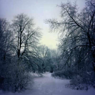 winter_mourning